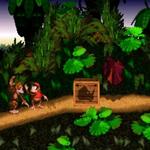 Donkey Kong Country - Jungle groove - part 1 klingelton