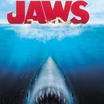 Der weiße Hai klingelton